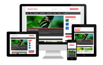 Dynamic Websit In Jaipur Freelancer SEO Experts