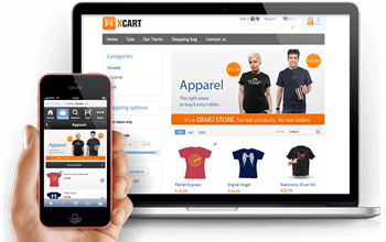 Ecommerce Website In Jaipur Freelancer SEO Experts
